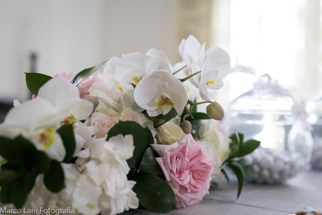 La Rosa Scarlatta-90.jpg