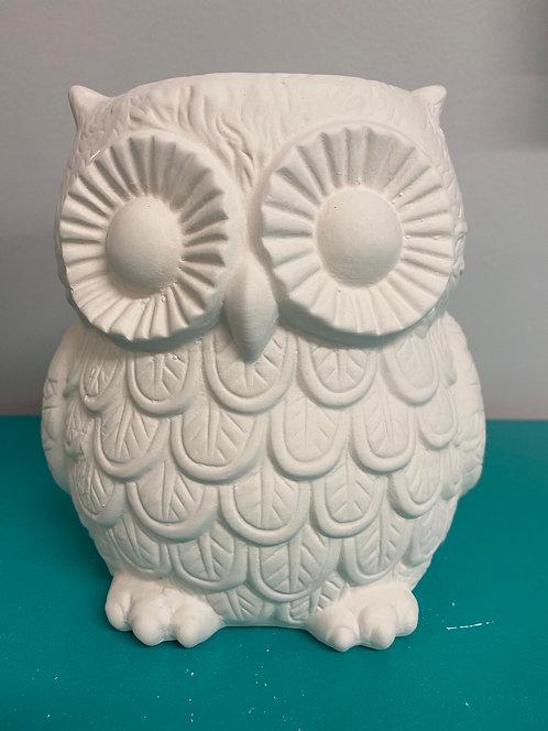 Detailed Owl