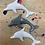 Thumbnail: Dolphin