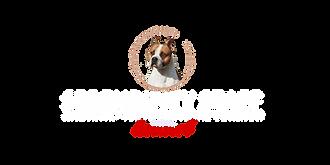 amtaff, american staffordshire terrier, serendipity, serendipitystaff, serendipity amstaff, dog, pet