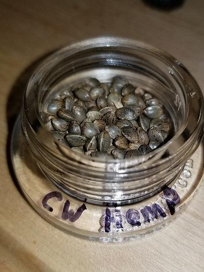 Cherrywine F3 #1 x Spectrum F2 #M6 (50 Seeds)