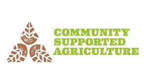 CSA Logo.jpeg