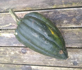 Recipe by Clare Mcelhatton. Follow theparchedpea on instagram for more recipes Any winter squash can be used for this recipe, but cooking...
