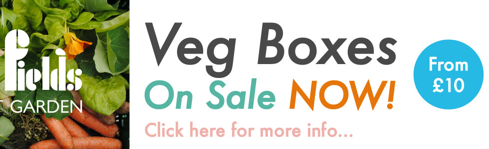 Veg Box Advert
