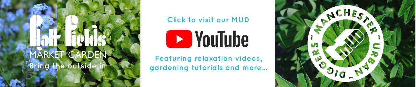MUD YouTube