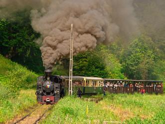 Теснолинейка е топ атракцията на Северозападна Румъния