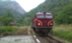 77 009 локомотив серия дизелов теснолинейка септември добринище бдж