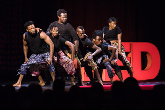 The QTribe delivers astounding opening for TEDGlobal 2017.