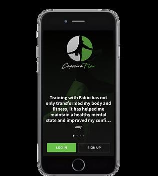 Capoeira Flow App -HS-Amy.png