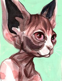 catheadmint