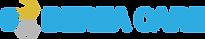 BereaCareINC_Logo_01Color (5-17-19).png