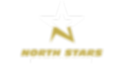 NS logo Goldwhite.PNG