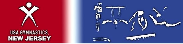 USA gymnastics banner.PNG