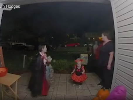 VIDEO: Trick-or-treater fills empty candy bowl with his own sweets