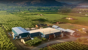 2 test positive for COVID-19 in connection with B.C. Okanagan fruit farm