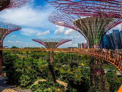 Gardens by the Bay and OCBC Skyway