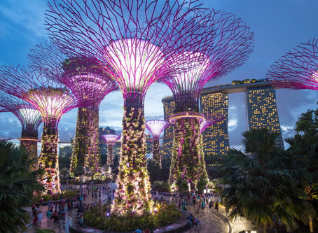 Let's Explore Gardens By The Bay