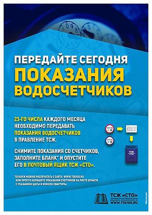 TSG100_site03_02009 big.jpg