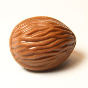 Walnuss Praline