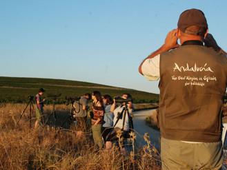 Andalucía apuesta por el turismo ornitológico de excelencia en el medio rural.