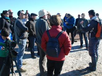 Un granito de sal por el Turismo en la bahía de Cádiz.
