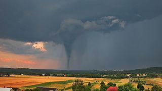 Storm Dream TN