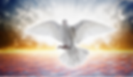 Holy Spirit TN