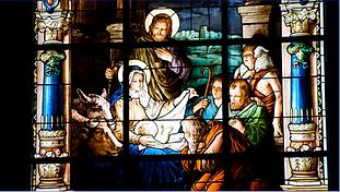 Nativity 2 TN