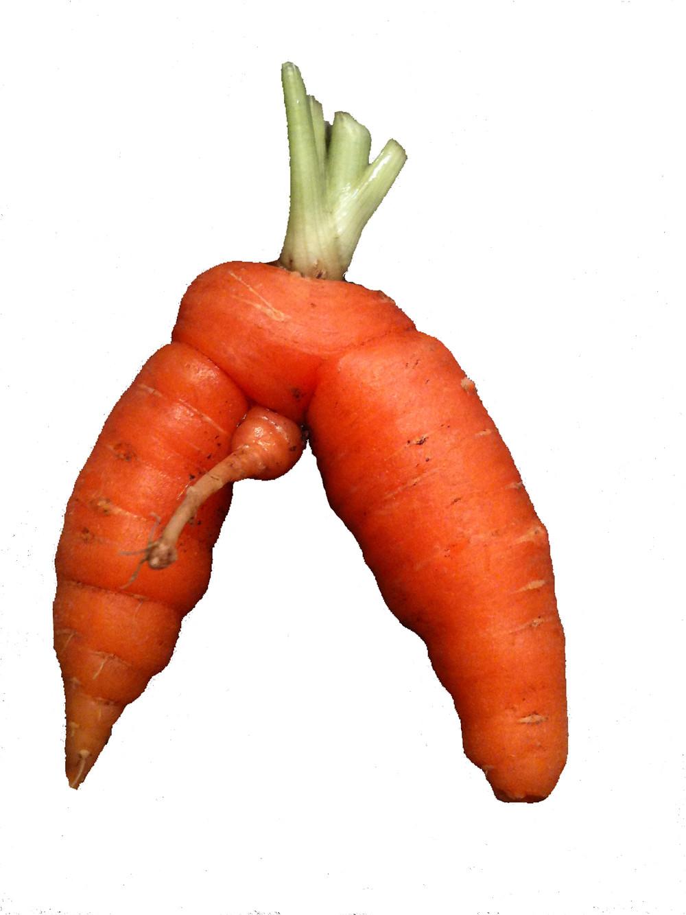 man carrot.jpg