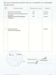 приложение к диплому тренер медиатор лис