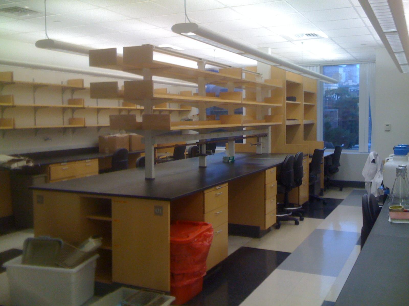 Sahay lab is born Sept 2011.JPG