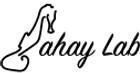 Sahay Lab Logo 2021.png