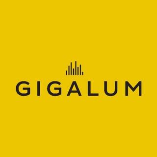 Gigalum - Social Media Strategy & Training