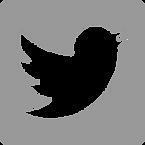 Twitter%20Social%20Media%20Management%20