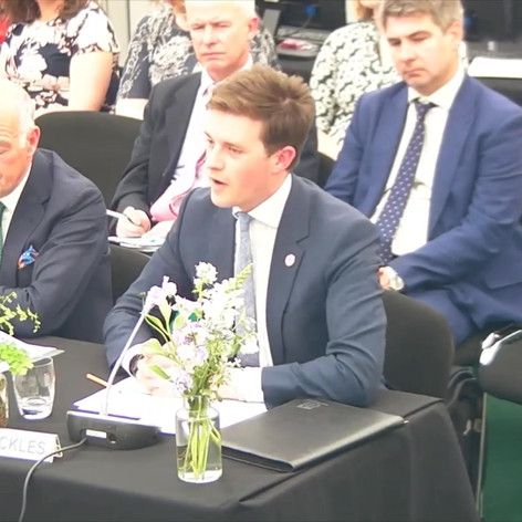 Giving evidence to a Select Committee in 2019