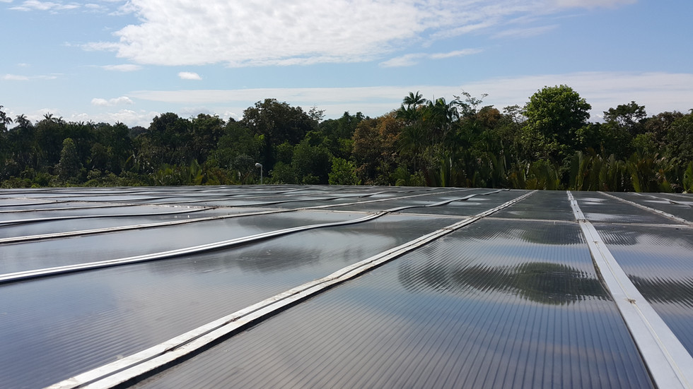 Poor Workmanship in Installing Polycarbonate Roof