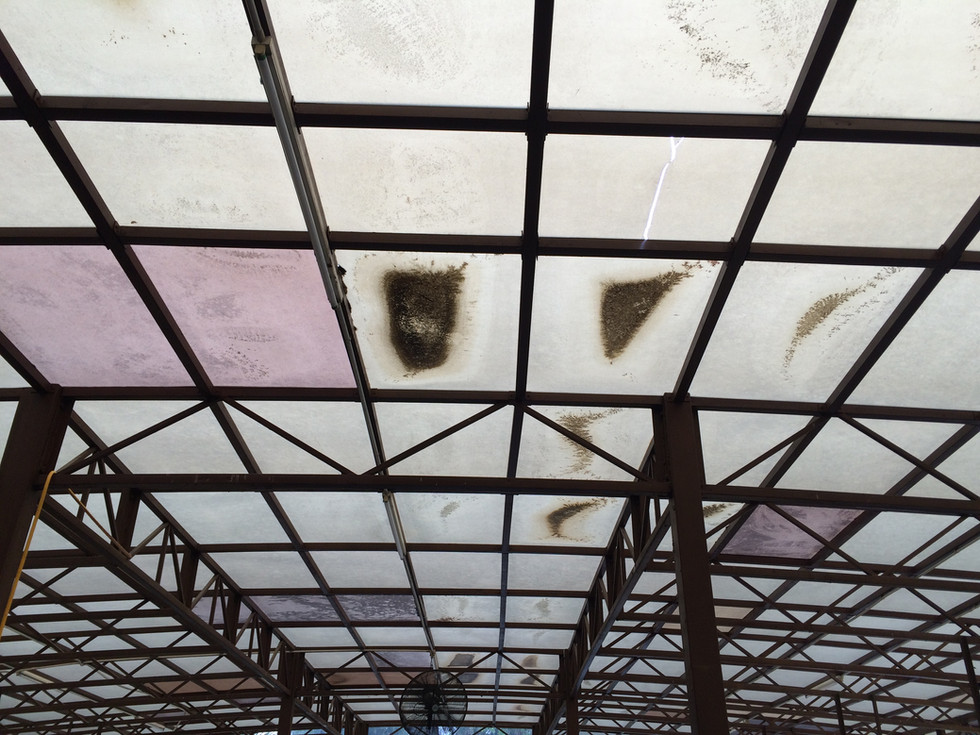 Inexperienced Contractor that resulted with Waviness & Uncoated Polycarbonate
