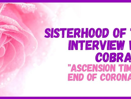 Ascension Timeline/End of Coronavirus Meditation Interview with Cobra by the Sisterhood of the Rose