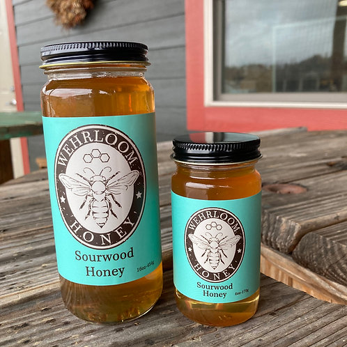 Sourwood Honey - screw top lid