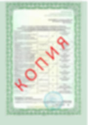 Лицензия 2018 (105).jpg