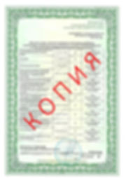 Лицензия 2018 (30).jpg