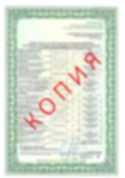 Лицензия 2018 (12).jpg