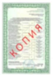 Лицензия 2018 (19).jpg