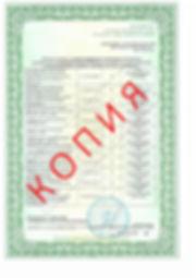 Лицензия 2018 (103).jpg