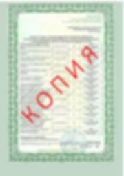 Лицензия 2018 (41).jpg