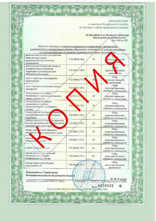 Лицензия 2018 (107).jpg