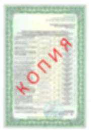 Лицензия 2018 (38).jpg