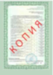Лицензия 2018 (127).jpg
