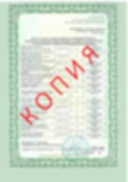 Лицензия 2018 (93).jpg