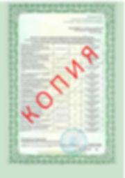 Лицензия 2018 (63).jpg